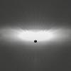31A_Dleds_optics